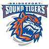 Sound Tigers Bridgeport