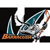 Barracuda San Jose