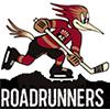 Roadrunners Tucson