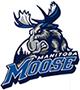 Moose Manitoba
