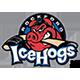 IceHogs Rockford